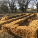 Photo de planche de culture en lasagne. Permaculture Gravelines