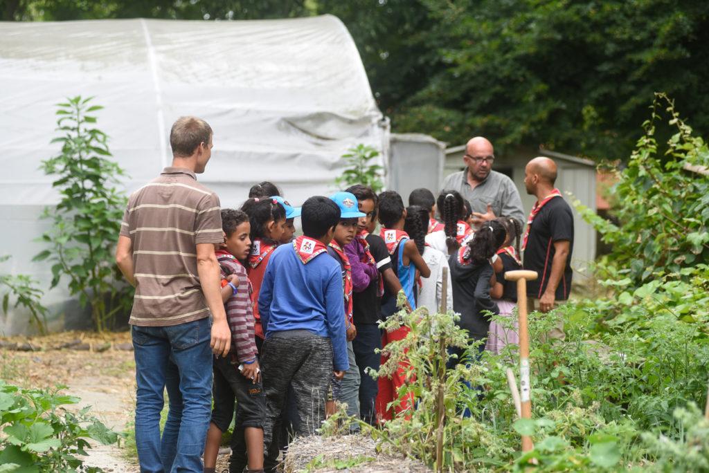 Essaimances pédagogie permaculture et Copains du Monde